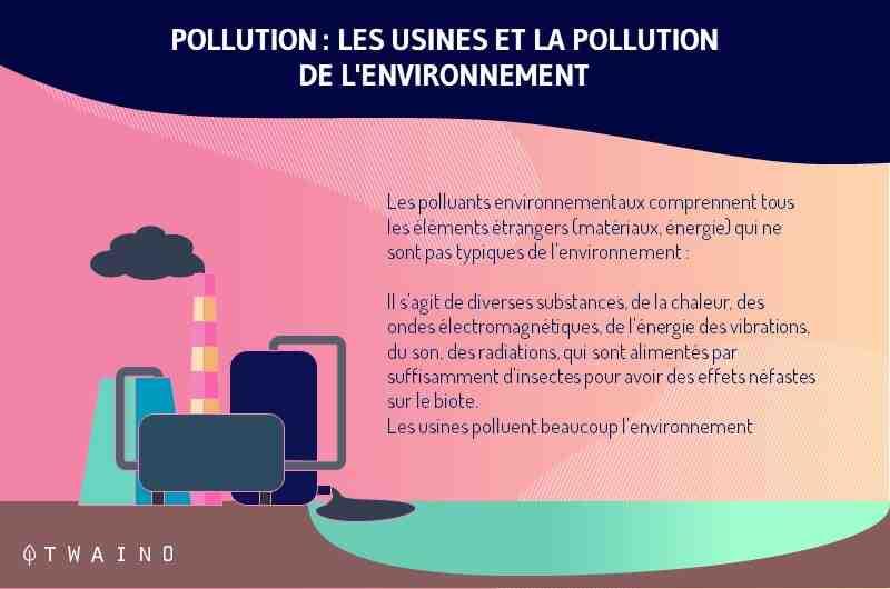 Quelles disciplines s'intéressent à l'environnement ?