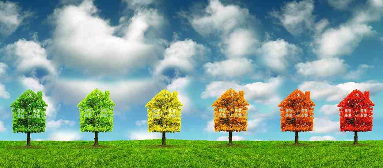 Quelles solutions pour protéger l'environnement ?