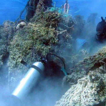 Quelles sont les conséquences de la pollution de l'environnement ?