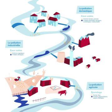Quelles sont les conséquences de la pollution marine ?