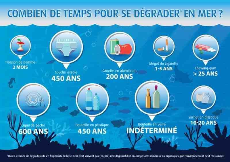 Quelles sont les conséquences pour l'environnement ?