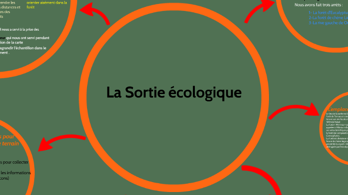 Quelles techniques sont utilisées dans la production écologique?