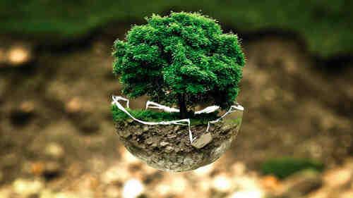 Qu'est-ce que la science de l'environnement ?