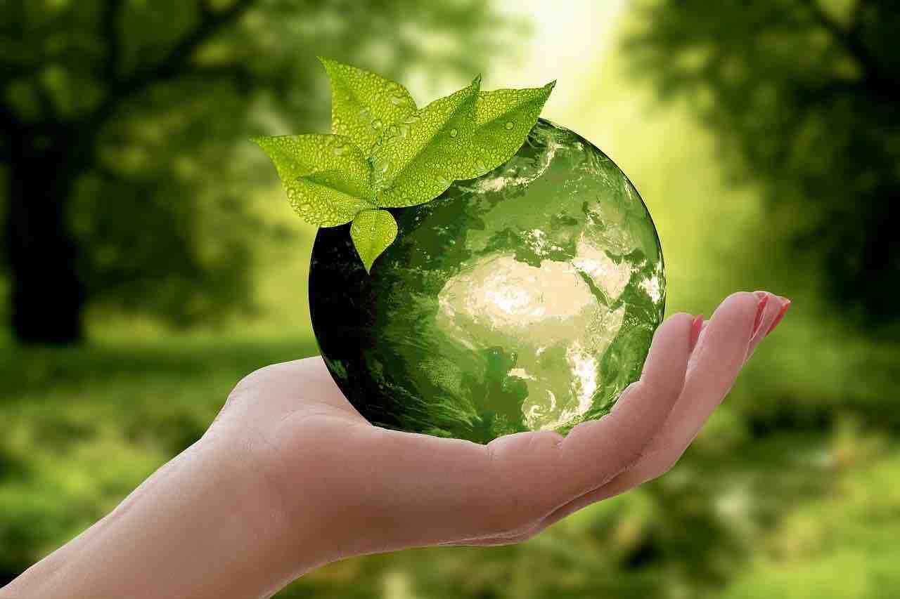 Qu'est-ce que l'écologiste ?