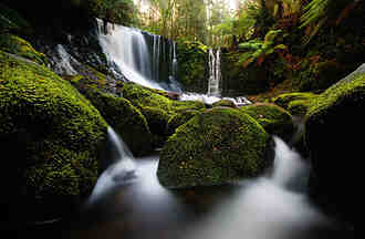 Quel est le milieu naturel ?