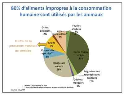 Quel est l'impact du téléphone sur l'environnement ?