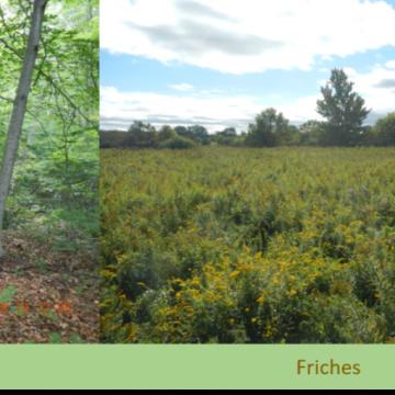 Quels sont les différents milieux naturels ?